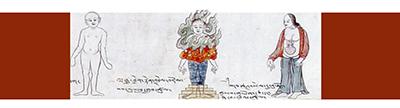 Tibetan Medicine course - 1st year